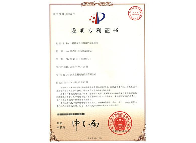 2013年杨树花专利证书