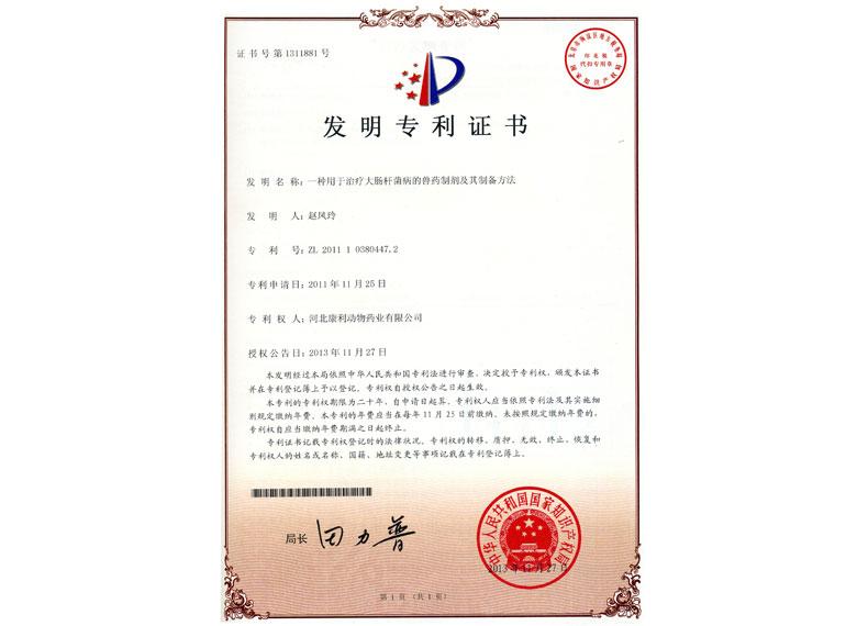 2011年白龙合剂专利证书
